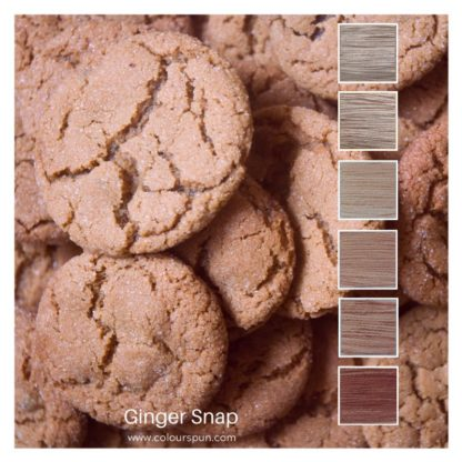 Ginger Snap biscuits inspired this colour stack of 6 colours called Ginger Snap