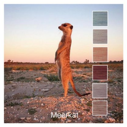 Meerkat is a Colour Stack of 6 colours inspired by a lone meerkat on guard in the Kalahari
