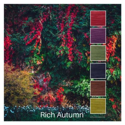 Rich Autumn is a Colour Stack of 6 colours inspired by an autumn garden