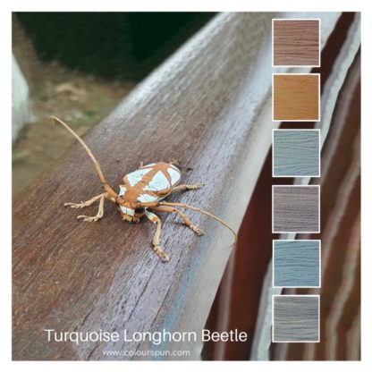 Turquoise Longhorn Beetle is a Colour Stack of 6 colours inspired by a beetle o the same name